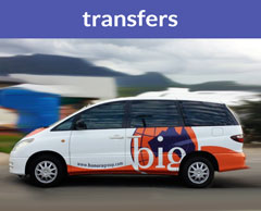 services-transfers
